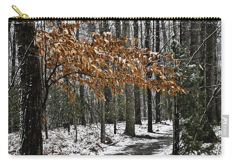 Snow Carry-all Pouch featuring the photograph A Walk In The Snow Quantico National Cemetery by Teresa Mucha