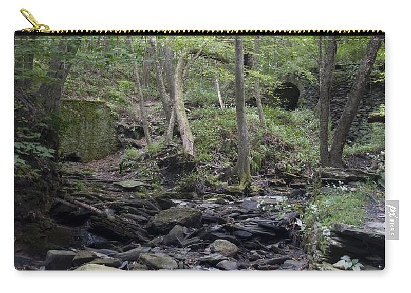 Woods Carry-all Pouch featuring the photograph A Walk In The Woods by Steven Natanson