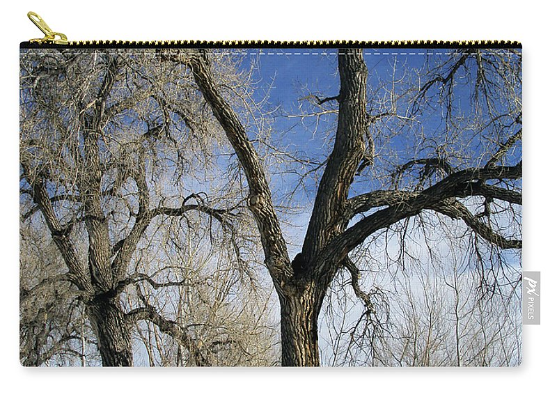 Tree Carry-all Pouch featuring the photograph A Winter Kiss by Angelina Vick