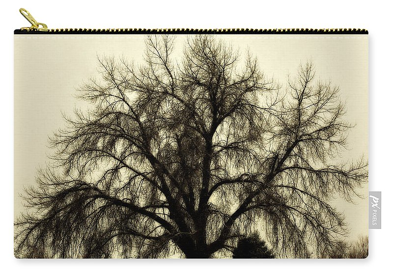 Tree Carry-all Pouch featuring the photograph A Winter's Day by Marilyn Hunt