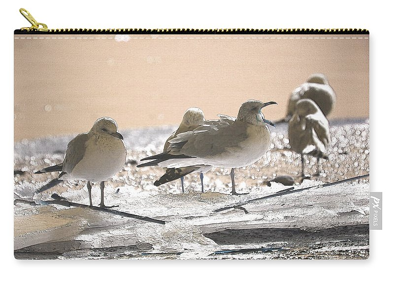 Coastal Carry-all Pouch featuring the photograph A Winter's Day Passing Bye by Karol Livote