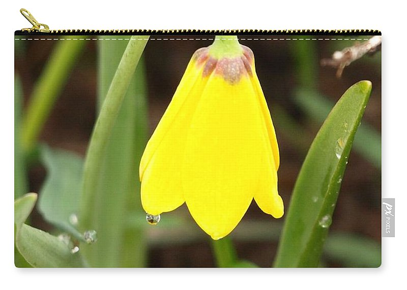 Flower Carry-all Pouch featuring the photograph A Yellow Bell's Tear by DeeLon Merritt