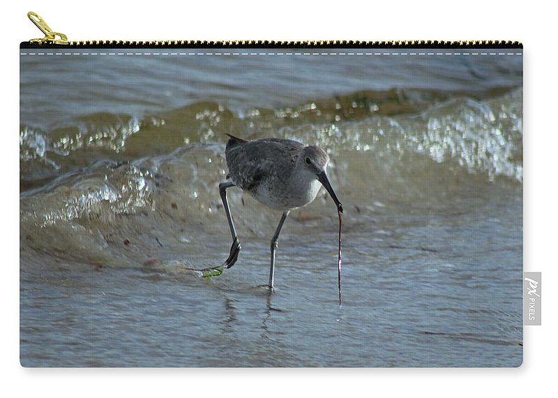 Bird Carry-all Pouch featuring the photograph Abbott by Michiale Schneider