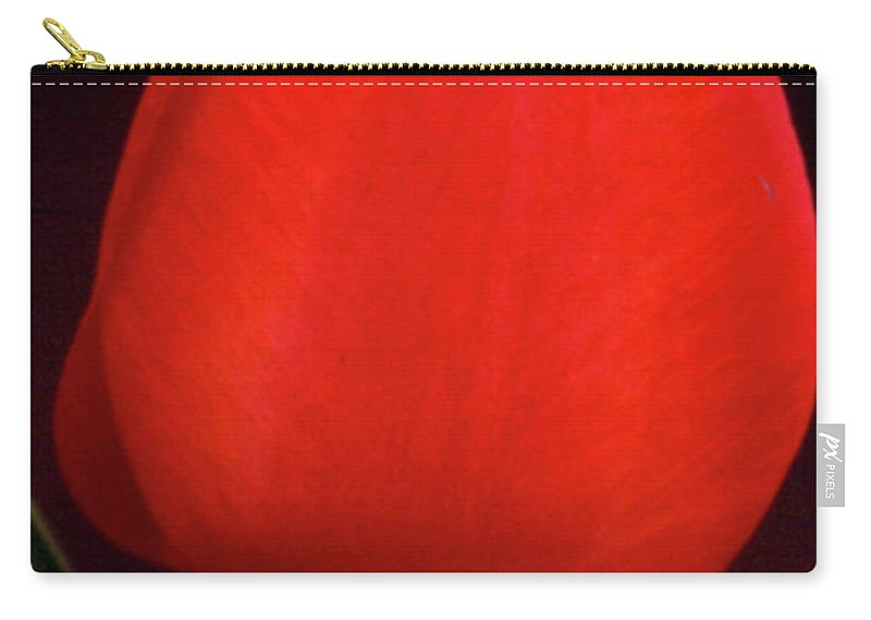 Background Carry-all Pouch featuring the photograph About To Bloom by Alan Look