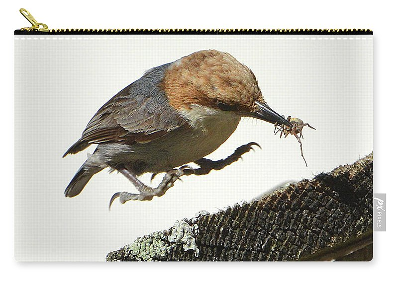 Nuthatch Carry-all Pouch featuring the photograph About To Land by Jerry Griffin