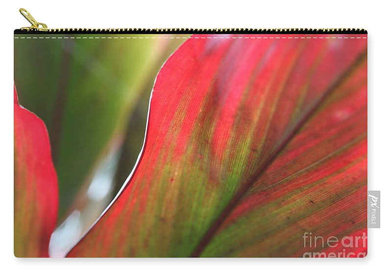 Pink Carry-all Pouch featuring the photograph Abstract Leaves by Nadine Rippelmeyer