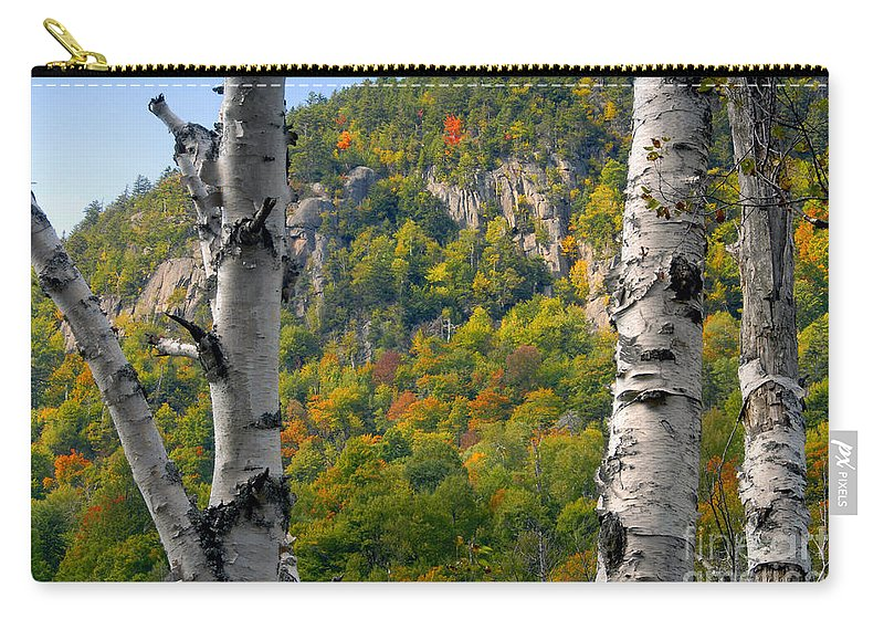 Adirondack Mountains New York Carry-all Pouch featuring the photograph Adirondack Mountains New York by David Lee Thompson