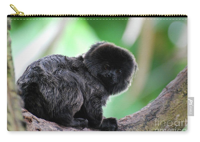 Goeldi Carry-all Pouch featuring the photograph Adorable Goeldi's Marmoset In A Tree by DejaVu Designs
