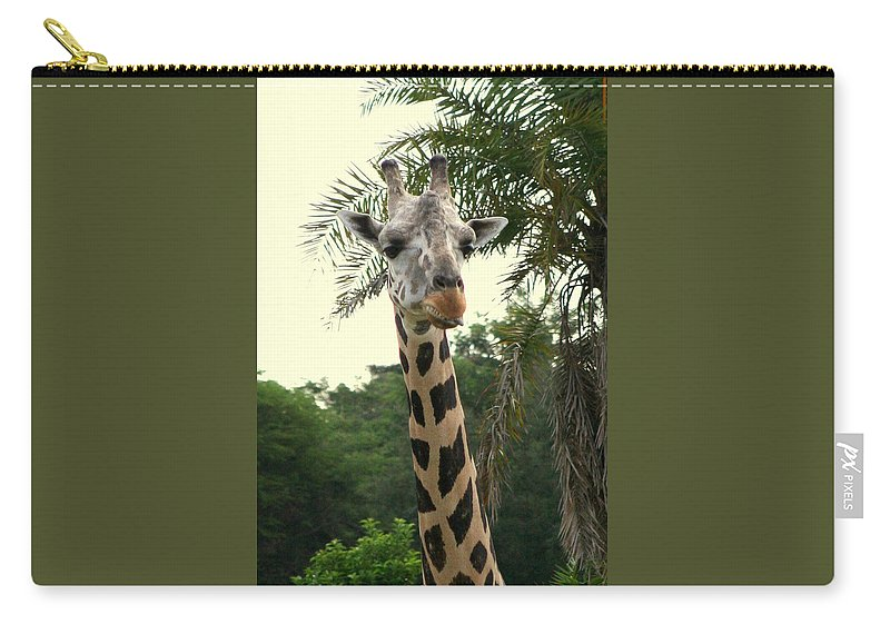 Giraffa Camelopardalis Carry-all Pouch featuring the photograph Adorable Grinning Giraffe by Anita Hiltz