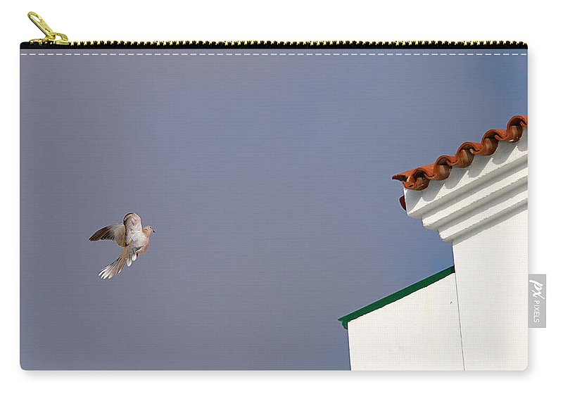 Lehtokukka Carry-all Pouch featuring the photograph African Collared Dove 1 by Jouko Lehto