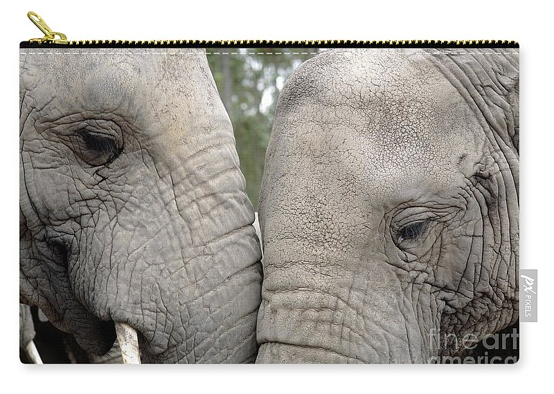 African Elephant Carry-all Pouch featuring the photograph African Elephants by Neil Overy