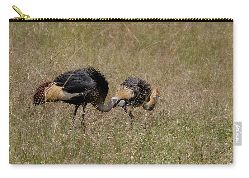Grey Crown Crane Carry-all Pouch featuring the photograph African Grey Crowned Crane With Chick by Joseph G Holland