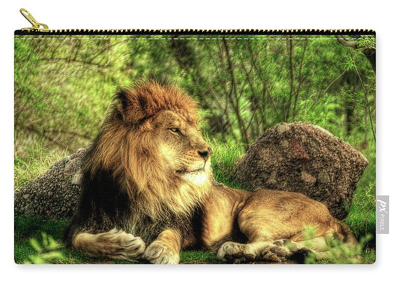 African Lion Carry-all Pouch featuring the photograph African Lion by Saija Lehtonen