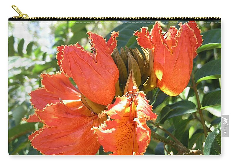 African Tulip Carry-all Pouch featuring the photograph African Tulips by Mary Deal