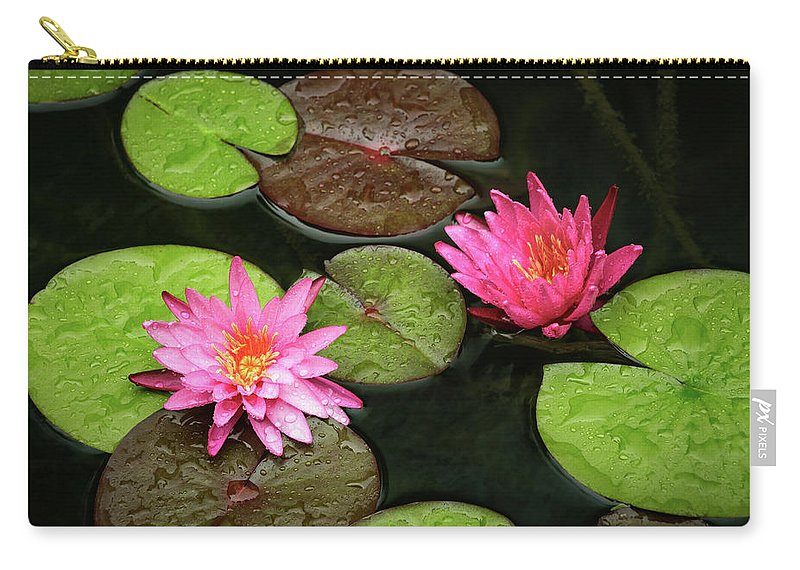 Dallas Carry-all Pouch featuring the photograph After The Rain by Ann Skelton