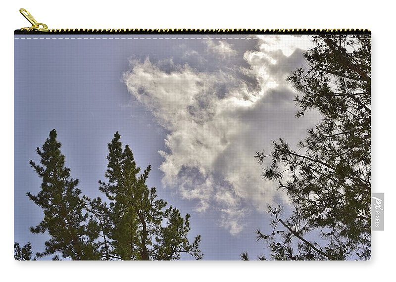 Linda Brody Carry-all Pouch featuring the photograph After The Rain Vi by Linda Brody