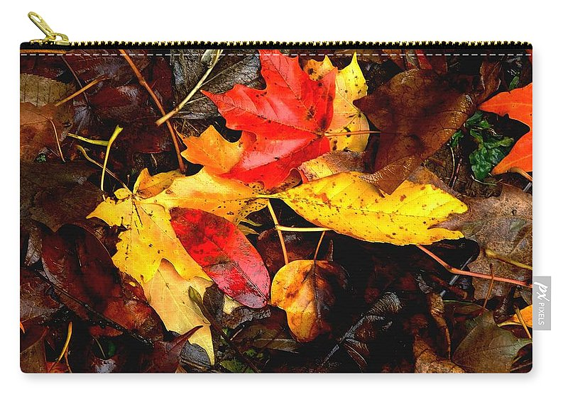 Autumn Carry-all Pouch featuring the photograph After The Rains Of Autumn by RC DeWinter