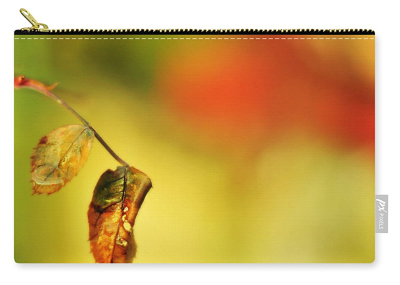 Rain Carry-all Pouch featuring the photograph After The Shower by Rebecca Sherman