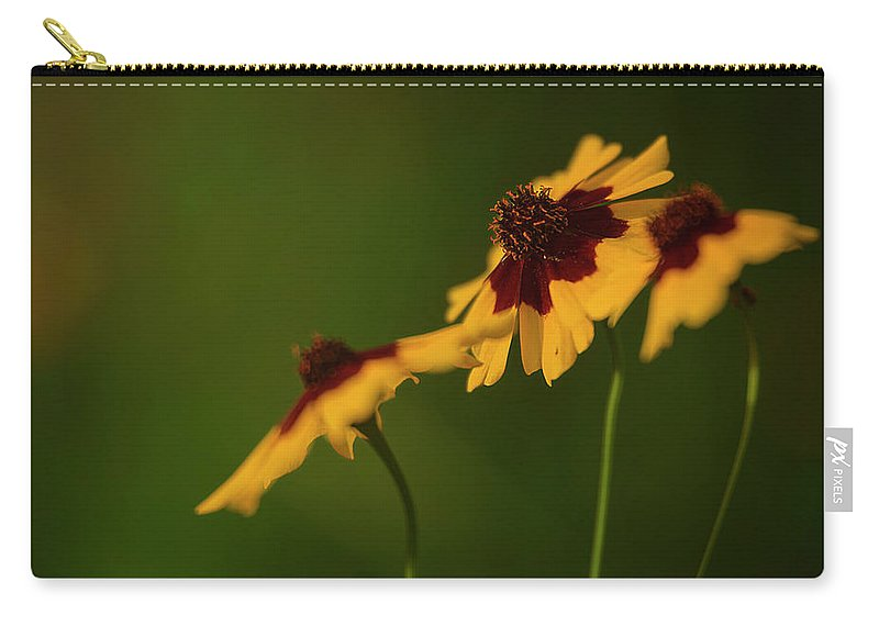 Landscape Carry-all Pouch featuring the photograph Afternoon Sun by Lance Boggan