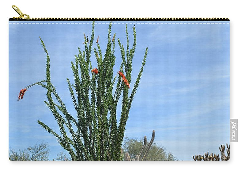 Desert Carry-all Pouch featuring the photograph Agave And Cactus by Aimee L Maher ALM GALLERY