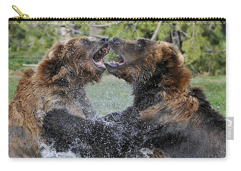 Yellowstone Carry-all Pouch featuring the photograph Agree To Disagree by Sandra Bronstein