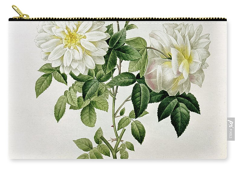 Aime Carry-all Pouch featuring the painting Aime Vibere by Pierre Joseph Redoute