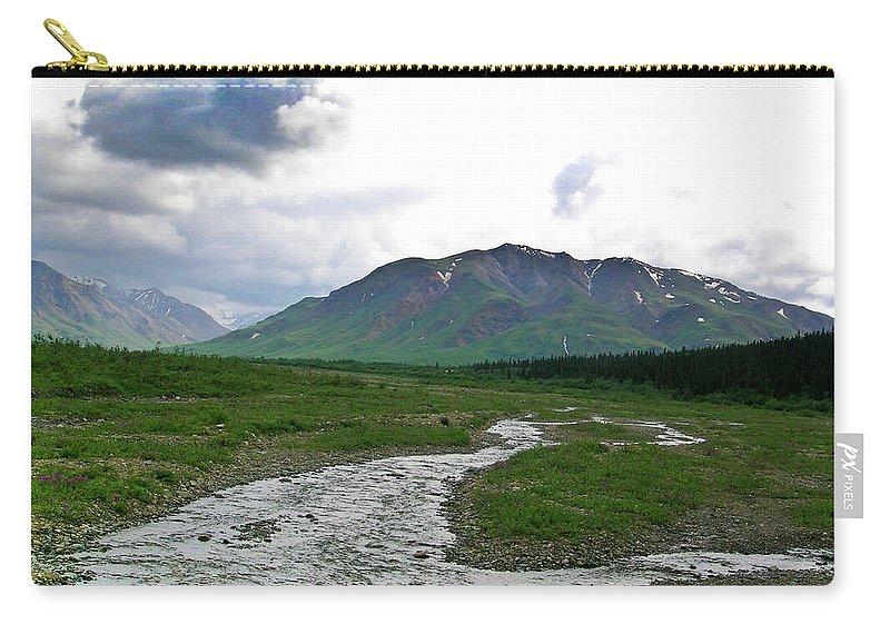 Denali Carry-all Pouch featuring the photograph Alaska Denali National Park Landscape 1 by Douglas Barnett