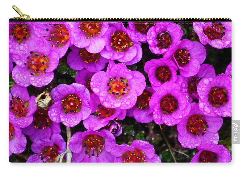 Flowers. Wild Flowers Carry-all Pouch featuring the photograph Alaskan Wild Flowers by Anthony Jones