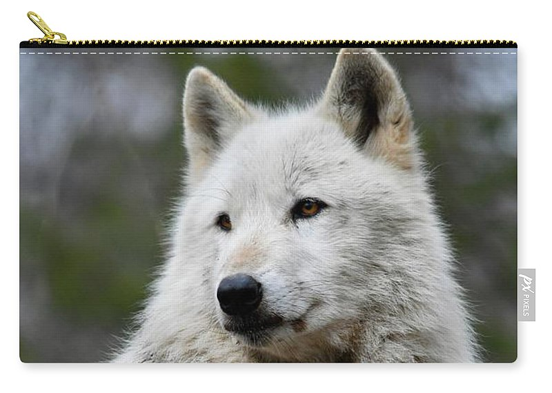Wolf Carry-all Pouch featuring the photograph Alawa The Wolf Rests by Richard Bryce and Family