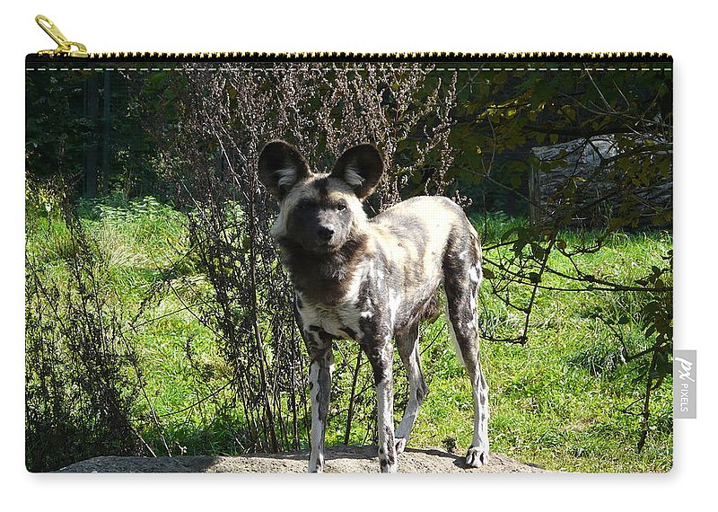 African Carry-all Pouch featuring the photograph All Ears by Valerie Ornstein
