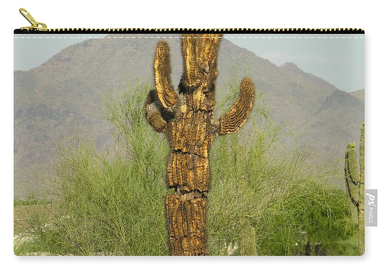 Cacuts Carry-all Pouch featuring the photograph All I Needed Was A Single Drop Of Water by Diane Greco-Lesser