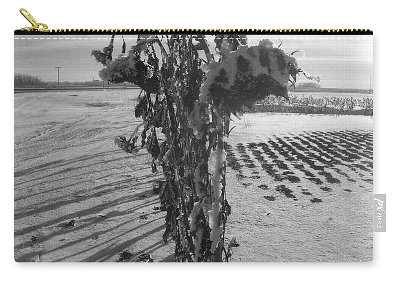 Sunflower Carry-all Pouch featuring the photograph All In A Row by Mary Mikawoz