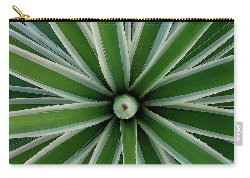 Art Sale Carry-all Pouch featuring the photograph All Roads Lead To Rome by John Irons