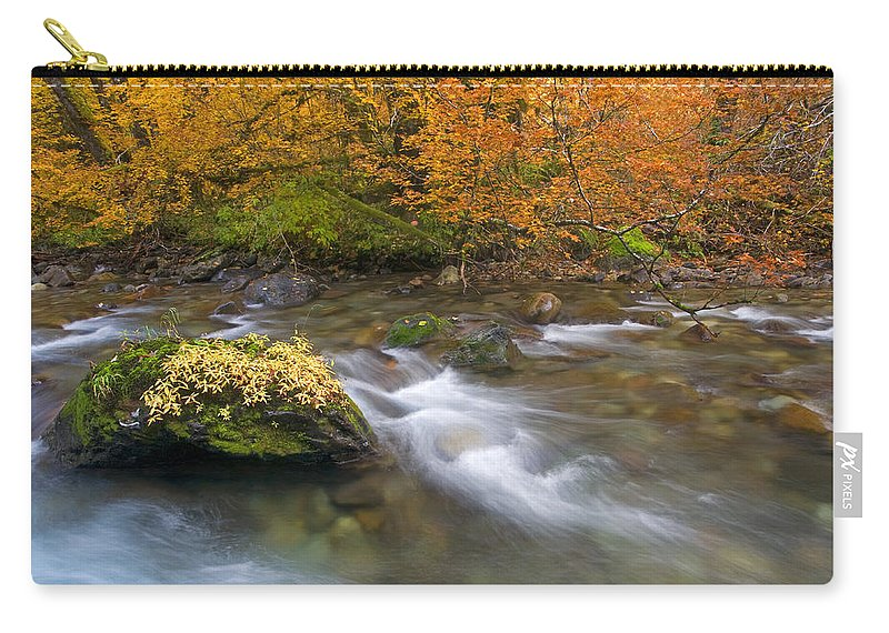 Stream Carry-all Pouch featuring the photograph All That Is Gold by Mike Dawson