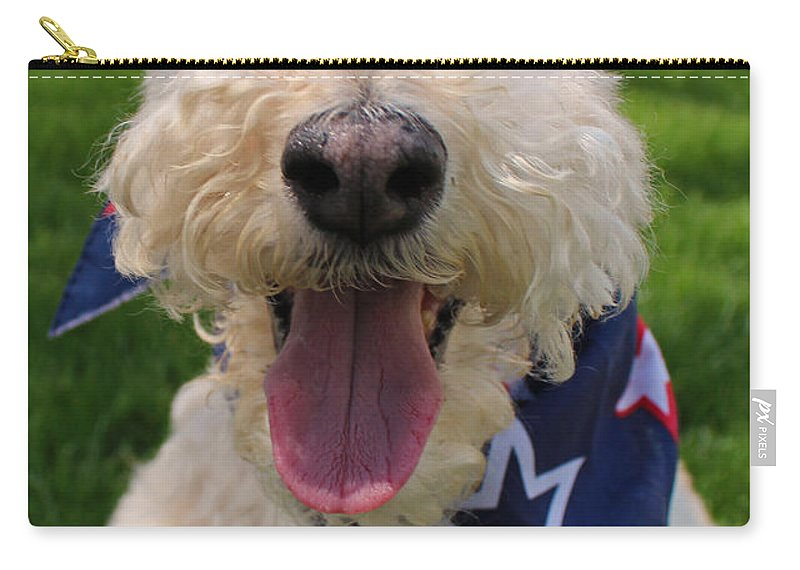 Dog Carry-all Pouch featuring the photograph Allegiance by Michiale Schneider
