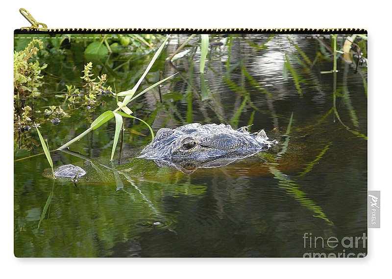 Alligator Carry-all Pouch featuring the photograph Alligator Hunting by David Lee Thompson