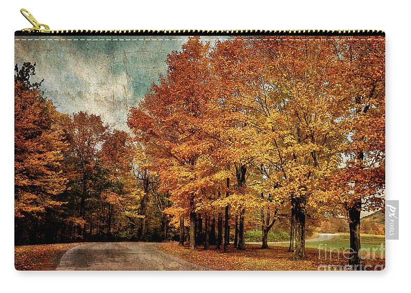 Country Road Carry-all Pouch featuring the photograph Almost Home by Lois Bryan