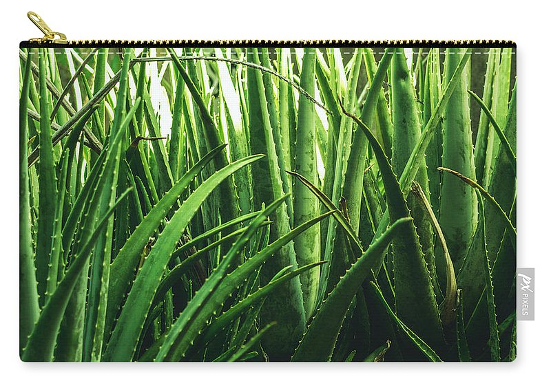 Aloe Carry-all Pouch featuring the photograph Aloe 5 by Totto Ponce