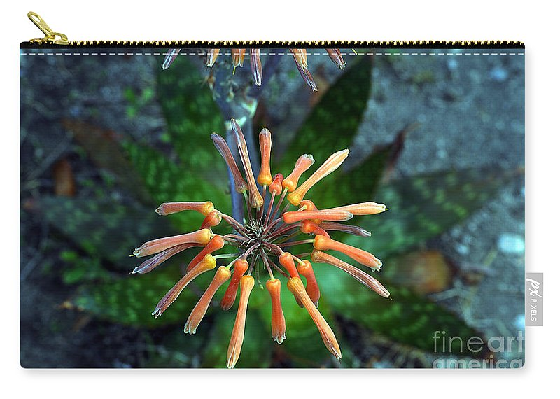 Clay Carry-all Pouch featuring the photograph Aloe Vera by Clayton Bruster