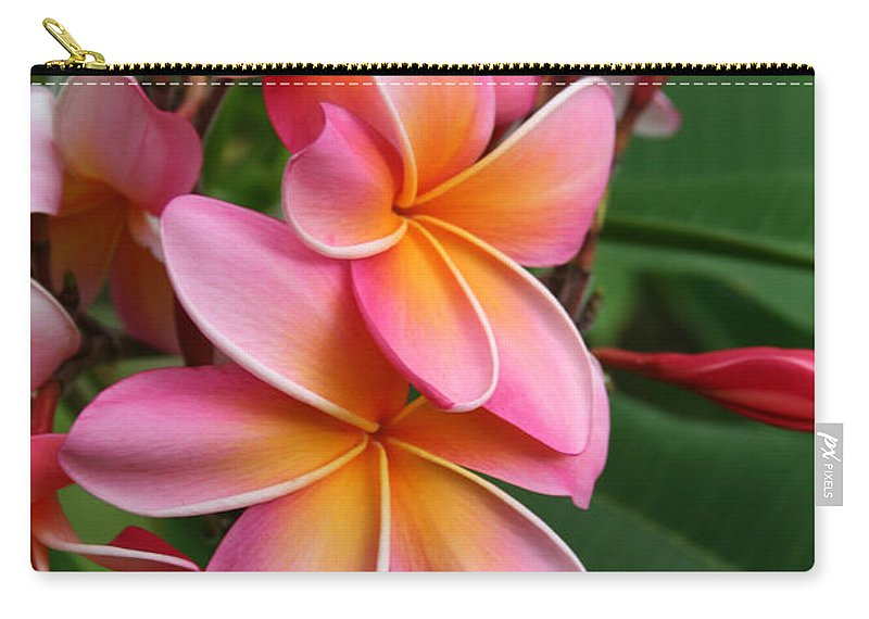 Pink Plumeria Carry-all Pouch featuring the photograph Aloha Lei Pua Melia Keanae by Sharon Mau