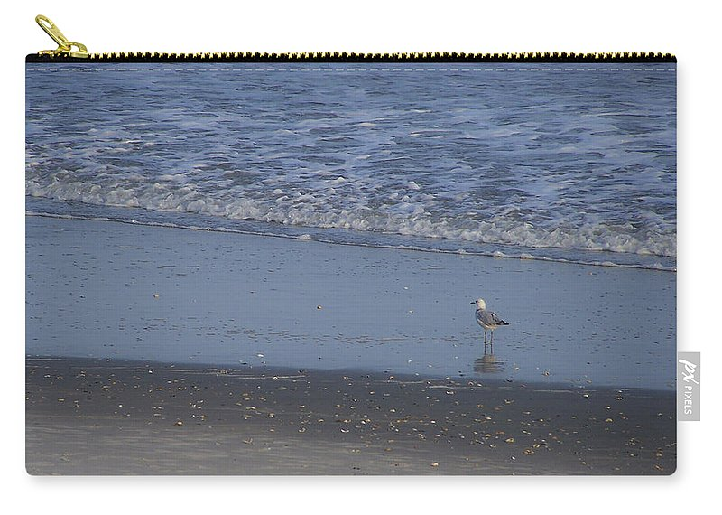 Ocean Carry-all Pouch featuring the photograph Alone In The Sand by Teresa Mucha