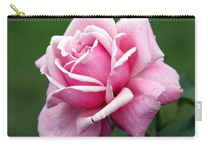 Rose Carry-all Pouch featuring the photograph Alone Time by Amanda Barcon