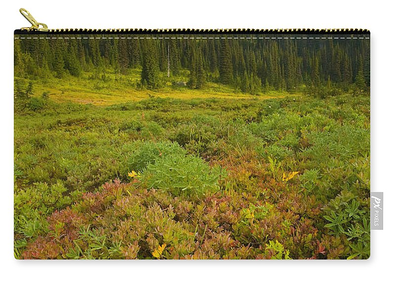 Mt. Rainier Carry-all Pouch featuring the photograph Alpine Meadows by Mike Dawson