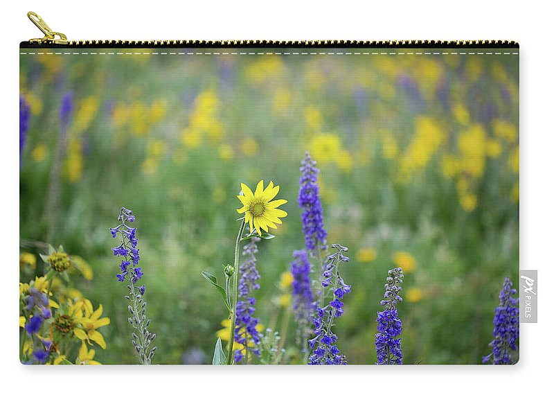 Crested Butte Carry-all Pouch featuring the photograph Alpine Sunflower by Meagan Watson