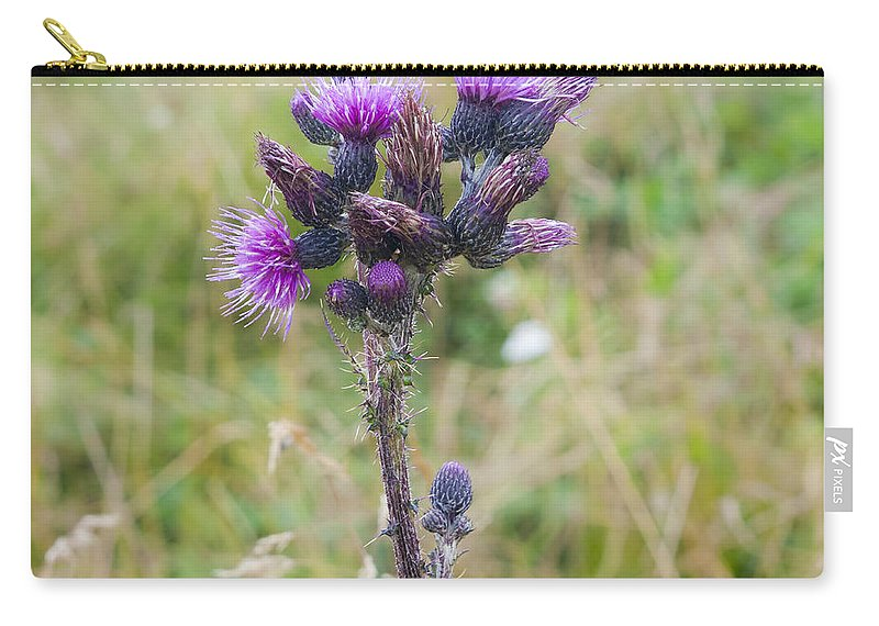 Mauve Carry-all Pouch featuring the photograph Alpine Thistle by Ilan Rosen