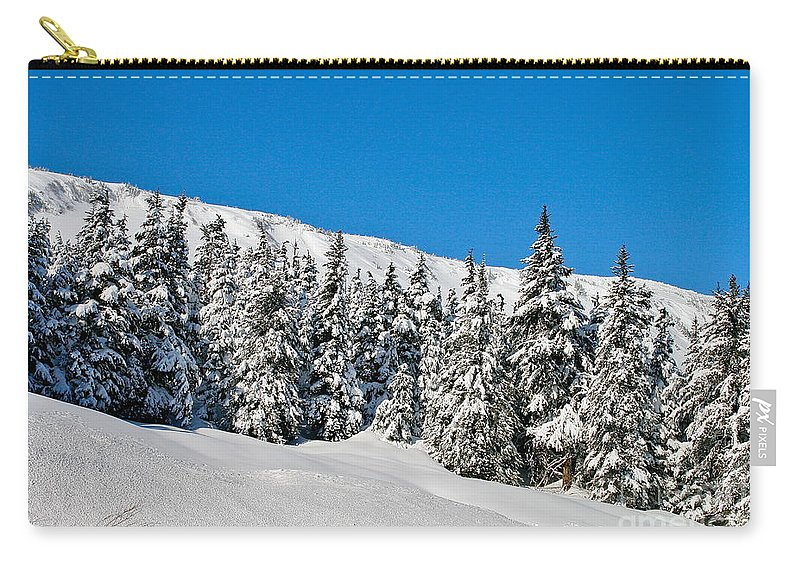 Mountain Carry-all Pouch featuring the photograph Alpine Winter by Rick Monyahan