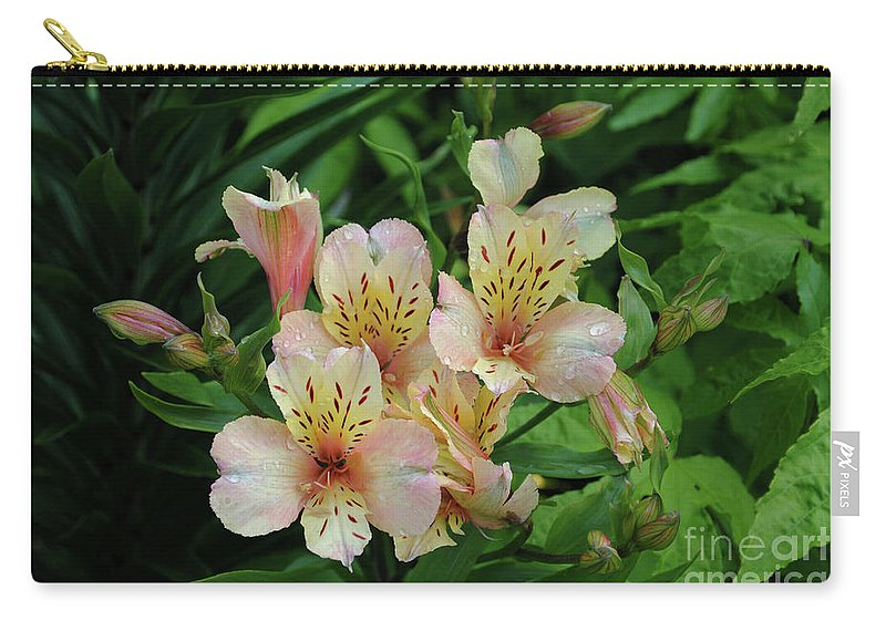 Alstroemeria Carry-all Pouch featuring the photograph Alstroemeria by Alicia Espinosa