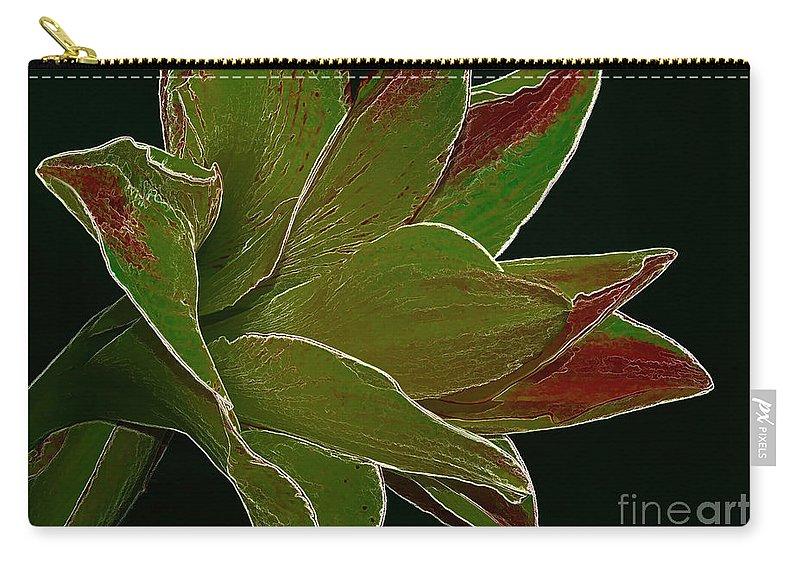 Amaryllis Flower Carry-all Pouch featuring the photograph Amaryllis Art by Deborah Benoit