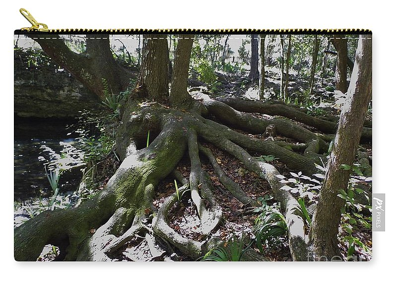 Roots Carry-all Pouch featuring the photograph Amazing Roots by D Hackett