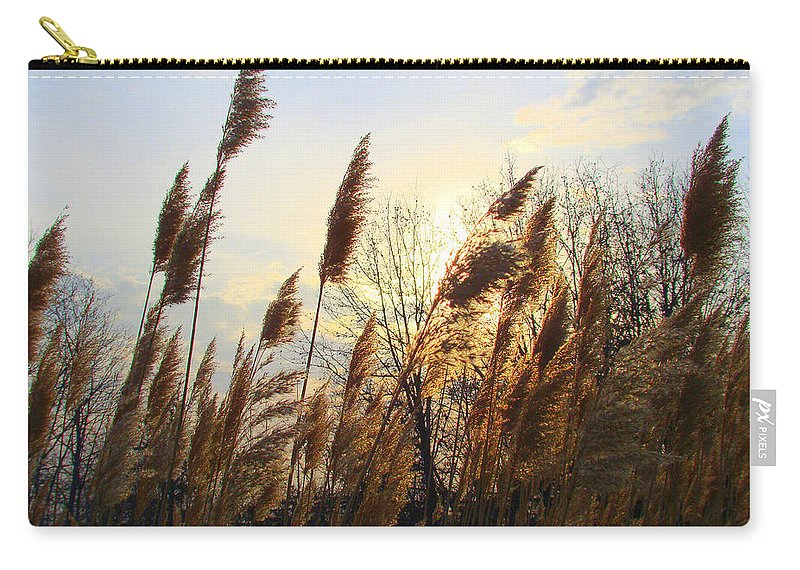 Pampasgrass Carry-all Pouch featuring the photograph Amber Waves Of Pampas Grass by J R Seymour